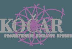 kocarlogotip