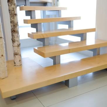 Primer svetovanja za prenovo lesenih stopnic v Ljubljani