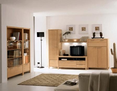 moderni regali v dnevni sobi