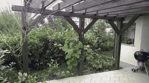 dotrajana lesena pergola