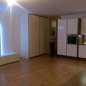 Kuhinja in dnevna soba v istem prostoru