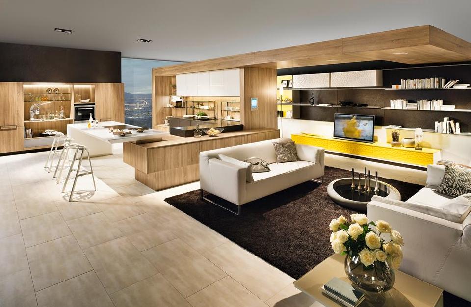 Moderna kuhinja in dnevna soba v enem prostoru
